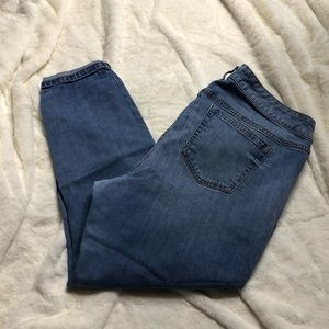 Torrid Skinny Jeans in more of a light wash